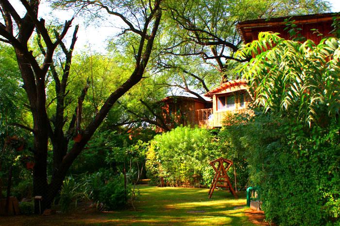 Tree House Resort Manali Tree House Resort Near Jaipur